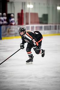 _LAS2010Hockey