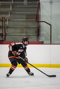 _LAS2070Hockey