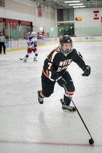 _LAS2319Hockey
