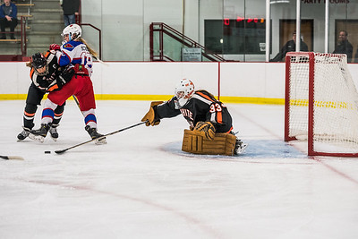 _LAS2336Hockey