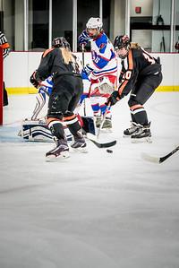 _LAS2355Hockey