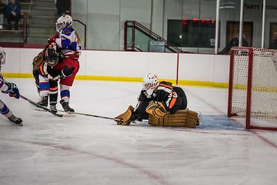 _LAS2337Hockey