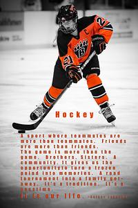 DSC_9491Hockey