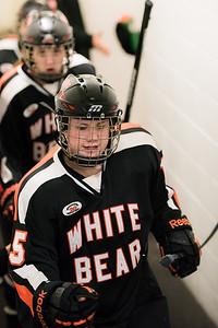 _LAS9660Hockey
