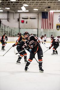 _LAS9475Hockey