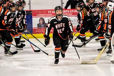 _LAS9688Hockey