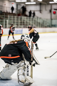 _LAS9478Hockey