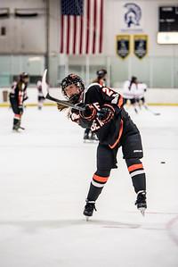 _LAS9471Hockey