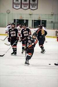 _LAS9501Hockey