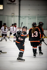 _LAS9490Hockey