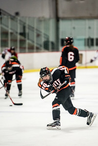 _LAS9495Hockey