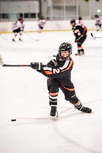 _LAS8366Hockey