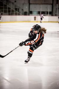 _LAS8311Hockey