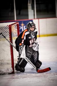 _LAS8361Hockey