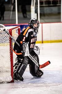 _LAS8359Hockey