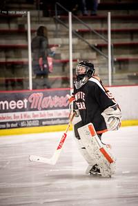 _LAS8315Hockey