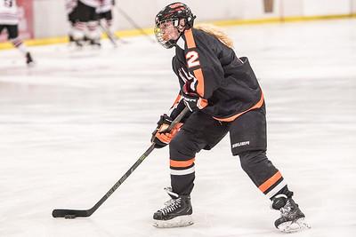 _LAS8262Hockey
