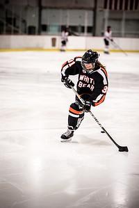 _LAS8310Hockey