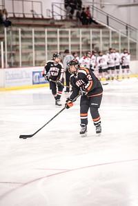 _LAS8291Hockey