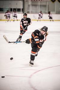 _LAS8363Hockey