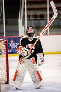 _LAS8348Hockey
