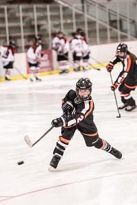 _LAS8271Hockey
