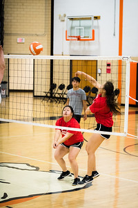 DSC_1696VOLLYBALL