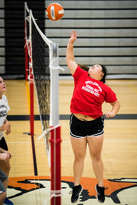 DSC_1694VOLLYBALL