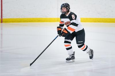 _DLS3523Hockeyplayoff1