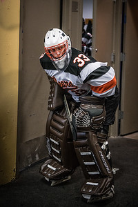 _DLS3455Hockeyplayoff1