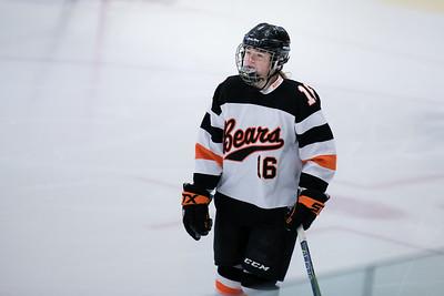 _DLS3531Hockeyplayoff1