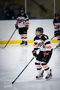_DLS3496Hockeyplayoff1