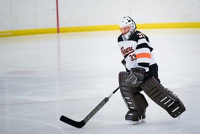 _DLS3521Hockeyplayoff1