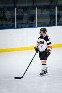 _DLS3494Hockeyplayoff1