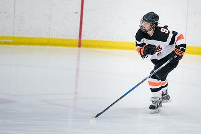 _DLS3525Hockeyplayoff1