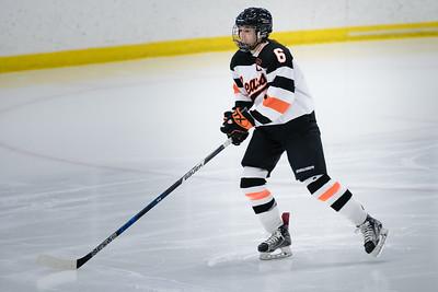 _DLS3498Hockeyplayoff1