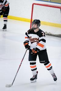 _DLS3527Hockeyplayoff1