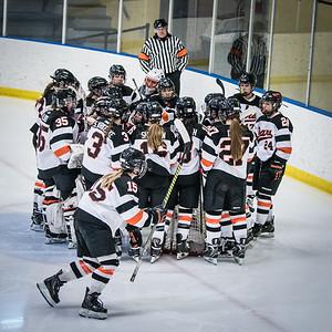 _DLS3557Hockeyplayoff1