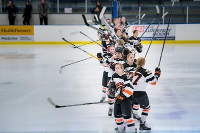 _DLS3550Hockeyplayoff1