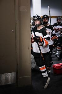_DLS3478Hockeyplayoff1