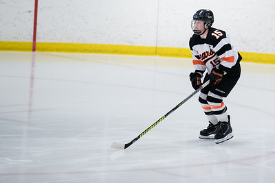 _DLS3528Hockeyplayoff1