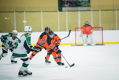 DLS_4306HockeyHM