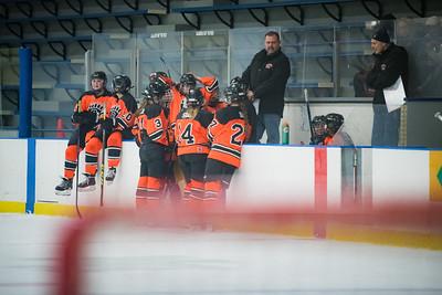 DLS_4214HockeyHM