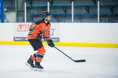 DLS_4226HockeyHM