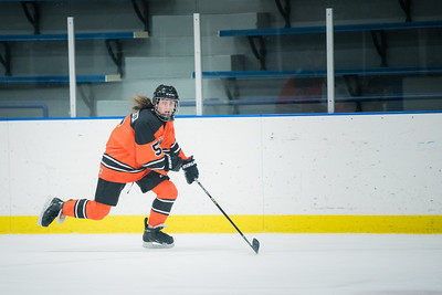 DLS_4168HockeyHM