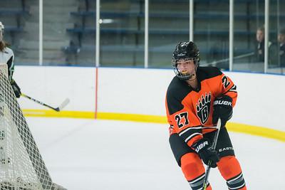 DLS_4131HockeyHM
