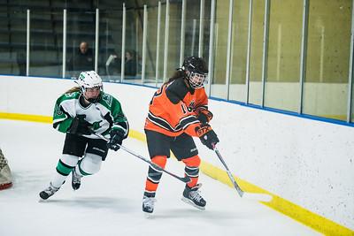 DLS_4152HockeyHM