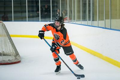 DLS_4232HockeyHM