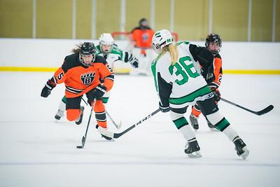 DLS_4308HockeyHM