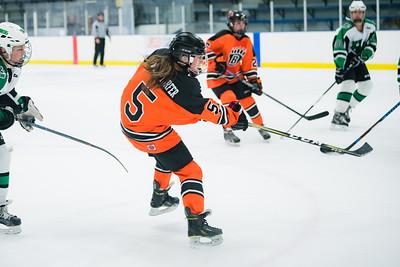 DLS_4315HockeyHM